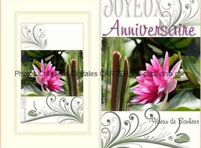 carte d anniversaire animee et musicale gratuite. Black Bedroom Furniture Sets. Home Design Ideas