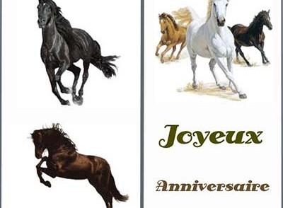 carte-anniversaire-chevaux.jpg