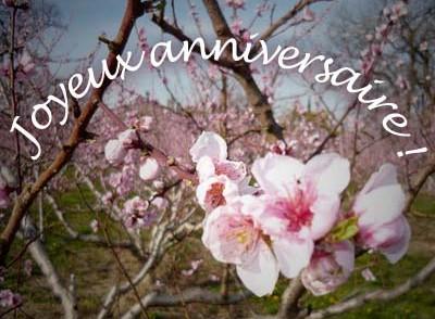 carte-anniversaire-gratuite-fleurs.jpg