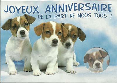 carte-d-anniversaire-animaux.jpg