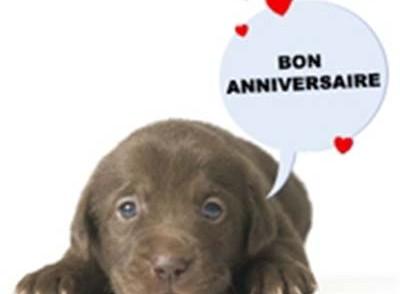 carte-d-anniversaire-d-animaux.jpg
